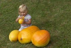 Bella ragazza del bambino divertendosi con l'agricoltura sulla toppa organica della zucca Fotografie Stock Libere da Diritti