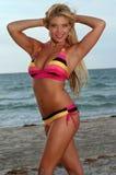 Bella ragazza del bikini immagine stock libera da diritti