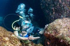 Bella ragazza dell'operatore subacqueo di Latina mentre toccando un pesce immagine stock