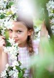 Bella ragazza della sorgente con i fiori Immagini Stock Libere da Diritti