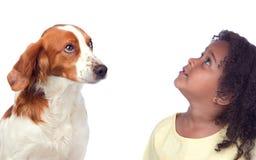 Bella ragazza e suo il cane che osservano in su Fotografia Stock Libera da Diritti