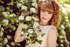Bella ragazza incinta dai capelli rossi e riccia sui precedenti o fotografia stock
