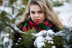 Bella ragazza nel tiro di foto di Natale di inverno al parco Fotografia Stock Libera da Diritti
