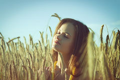 Bella ragazza sul giacimento di grano Fotografia Stock
