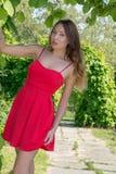 Bella ragazza in un vestito rosso Fotografie Stock Libere da Diritti