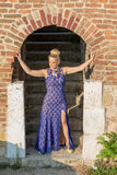 Bella ragazza in vestito Immagini Stock