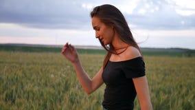 Bella ragazza in vestito che cammina nel campo diretto che tocca le orecchie del grano al tramonto archivi video