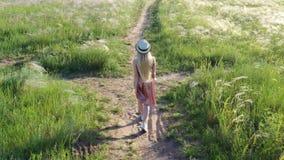 Bella ragazza in vestito e cappello sul campo nel tramonto stock footage