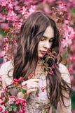 Bella ragazza vicino a Sakura, fiori rosa di fiuto dell'albero, guardanti giù, primo piano fotografie stock