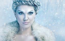 Bella regina del ghiaccio fotografia stock