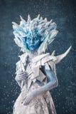 Bella regina della neve Immagini Stock