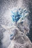 Bella regina della neve Fotografia Stock