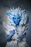 Bella regina della neve Fotografia Stock Libera da Diritti