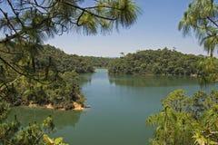 Lago tranquillo nel Chiapas Immagine Stock Libera da Diritti
