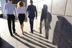 Bella riuscita gente, due tipi e ragazza, giovane businessme Immagine Stock Libera da Diritti
