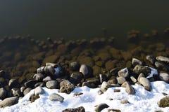 Bella riva di inverno del lago Fotografia Stock Libera da Diritti