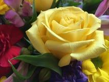 Bella rosa di giallo inclusa in un mazzo Fotografia Stock