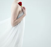 Bella rosa rossa della tenuta della donna Fotografia Stock Libera da Diritti