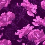 Bella Rose Background senza cuciture illustrazione vettoriale