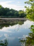 Bella scena del lago un giorno soleggiato nel Regno Unito immagine stock libera da diritti