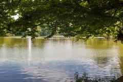 Bella scena del parco con prato inglese, gli alberi ed acqua fotografia stock libera da diritti