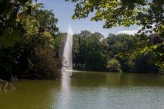 Bella scena del parco in parco pubblico con il lago fotografia stock libera da diritti