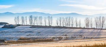 Bella scena di paesaggio di inverno Immagini Stock