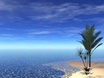 Bella scena tropicale Fotografia Stock