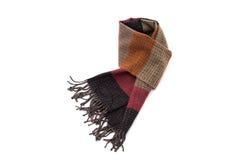 Bella sciarpa multicolore Fotografia Stock