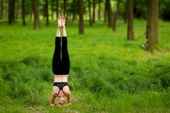 Bella sessione di yoga in legno Fotografia Stock