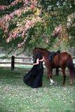 Bella signora che piombo il suo cavallo immagini stock