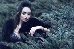 Bella signora che porta il vestito lussuoso dallo zecchino e la pelliccia nera del nero che si siedono nel cespuglio conifero e c fotografia stock libera da diritti