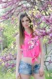 Bella signora di misura fra l'albero del fiore nel colore porpora Fotografie Stock Libere da Diritti