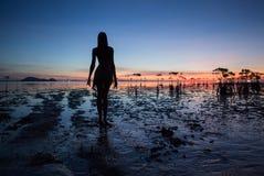 Bella siluetta sexy della donna che posa vicino al mare Tramonto della spiaggia fotografia stock