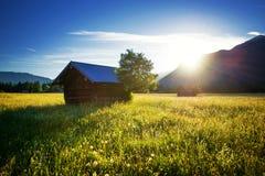 bella sorgente del prato Chiaro cielo soleggiato con la capanna in montagne Campo variopinto in pieno dei fiori Grainau, Germania fotografia stock
