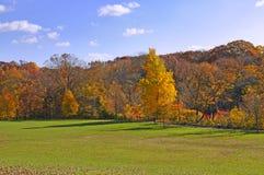 Bella sosta calma nei colori d'autunno luminosi fotografia stock libera da diritti