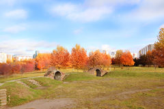 Bella sosta di autunno Autunno a Minsk alberi dei fogli di autunno Autumn Landscape Parco in autunno Foresta in autunno Immagine Stock Libera da Diritti
