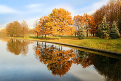 Bella sosta di autunno Autunno a Minsk alberi dei fogli di autunno Autumn Landscape Parco in autunno Riflessione di specchio degl Fotografia Stock
