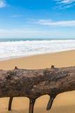 Bella spiaggia Immagini Stock Libere da Diritti