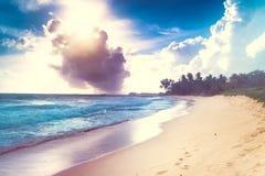 Bella spiaggia Immagine Stock Libera da Diritti