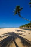 Bella spiaggia al Pipa Brasile del da di Praia fotografia stock libera da diritti