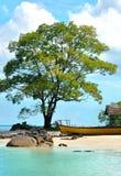 Bella spiaggia con il grandi albero e barca Fotografie Stock Libere da Diritti