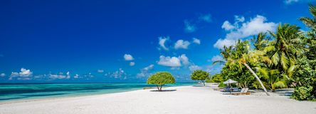 Bella spiaggia con le palme ed il cielo lunatico Concetto del fondo di festa di viaggio di vacanze estive fotografia stock libera da diritti