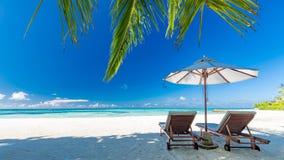 Bella spiaggia con le palme ed il cielo lunatico Concetto del fondo di festa di viaggio di vacanze estive immagine stock