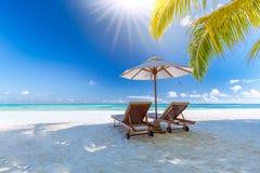 Bella spiaggia con le palme ed il cielo lunatico Concetto del fondo di festa di viaggio di vacanze estive fotografia stock