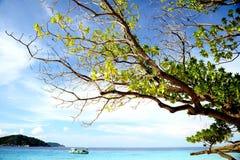 Bella spiaggia dalla Tailandia fotografia stock