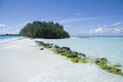 Bella spiaggia dei maldives Fotografia Stock Libera da Diritti