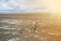 Bella spiaggia del rayong di prasae del nam di Pak Vista naturale della foresta della mangrovia nella baia Tailandia di Rayong Pr fotografie stock