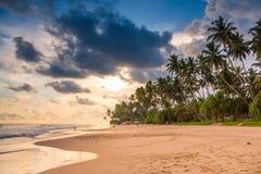 Bella spiaggia dello Sri Lanka alla luce di tramonto fotografie stock