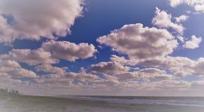Bella spiaggia dorata soleggiata di Florida che rappresenta apertura, potenziale ed esplorazione Fotografia Stock Libera da Diritti